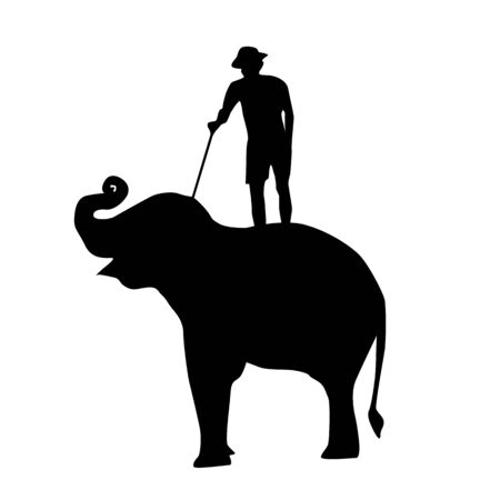 elephant and mahout young boy on white background