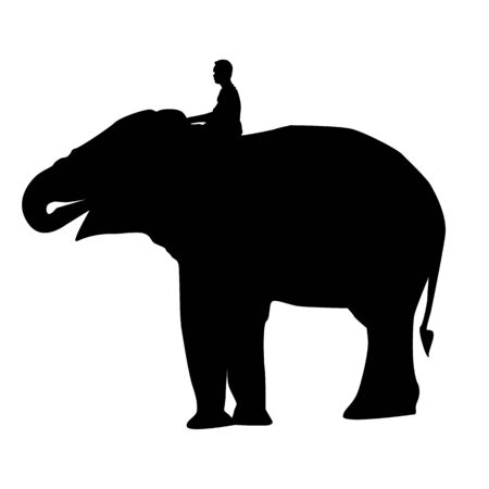 straddle: elephant and mahout young boy on white background