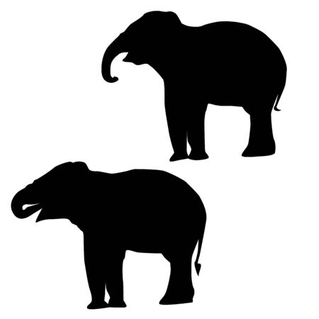 large group of animals: Elephant Silhouettes Stock Photo