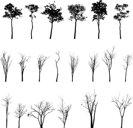 Dead Tree without Leaves Vector Stock Illustratie