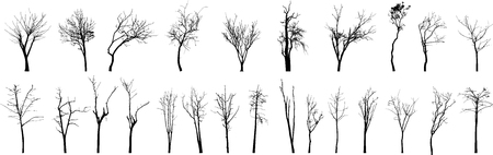 Dead Tree without Leaves Vector Ilustrace
