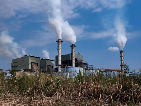Sugar cane factory Standard-Bild
