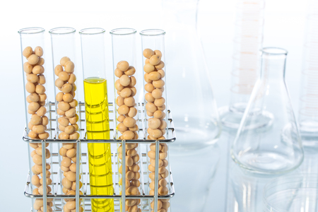 test tube holder: Soybean genetically modified, Plant Cell, laboratory