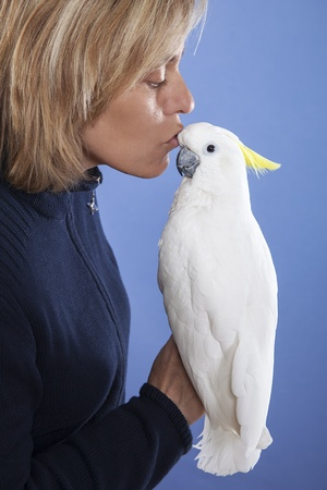 blonde woman showing affection to his white cockatoo Stock Photo - 17221870