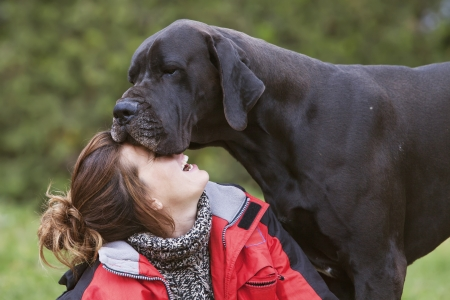 the great outdoors: girl laughing while her dog kisses her face