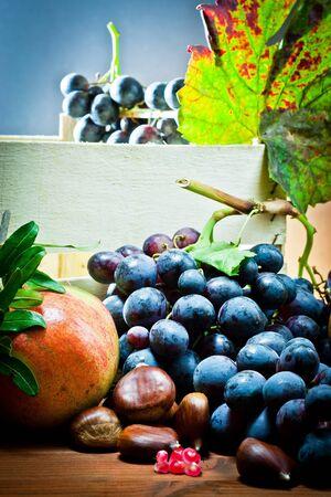still life of autumnal foods  photo
