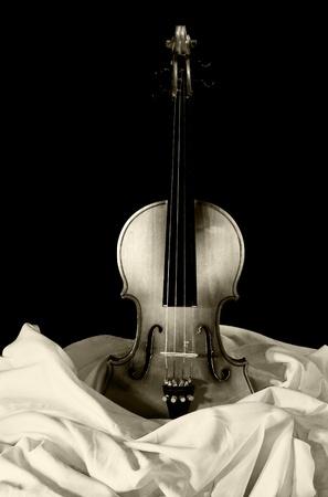 violin on canvas