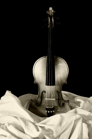 violin on canvas photo
