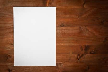 paper white  photo