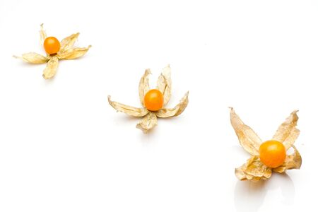 physalis: three physalis isolted on white Stock Photo