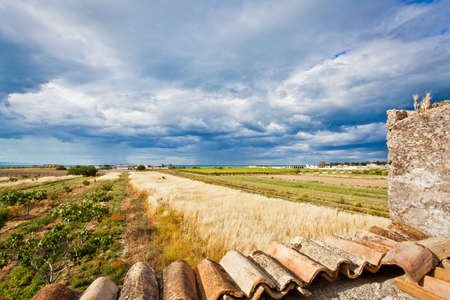 landscape with cloudy sky in the farmland photo