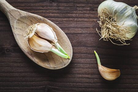 garlic on wooden spoon  photo