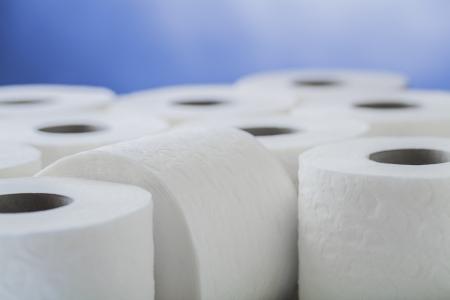 a restroom: paper toilet rolls