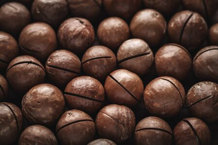 macadamia nuts Stock Photo - 16854073