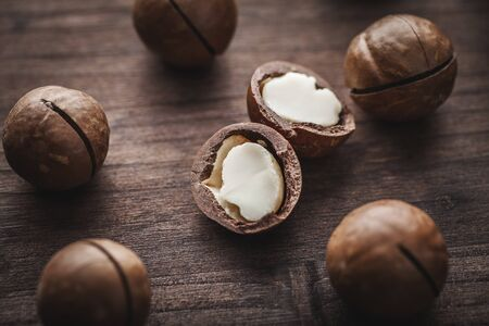 macadamia nuts  photo