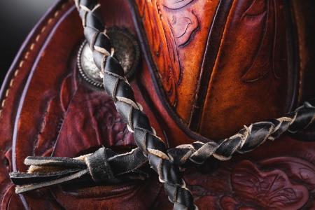 whip: horse saddle