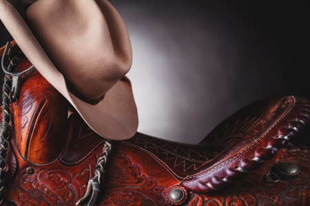 brown leather hat: horse saddle