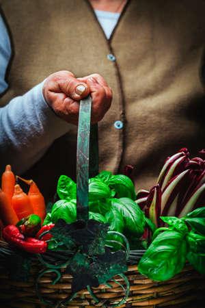 l agriculture: fruits and vegetables in basket