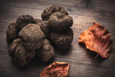 검은 트 뤼프 버섯