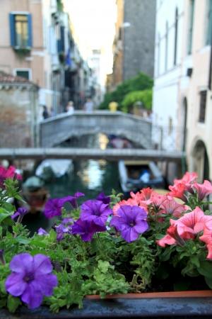localities: Venice flower bridge Italy