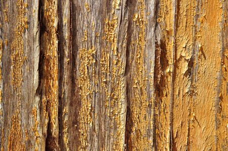 A wooden wall with it photo
