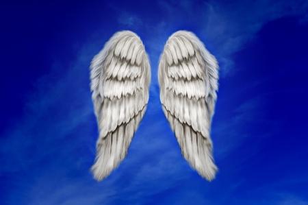 Angel wings on a dark blue sky photo