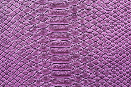 crocodile skin leather: Detail of painted crocodile skin Stock Photo