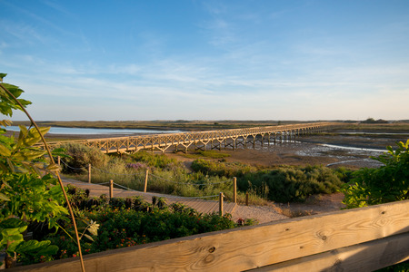 Bridge in Quinta do Lago, that leads to the beach and goes across Ria Formosa, in Algarve, Portugal photo