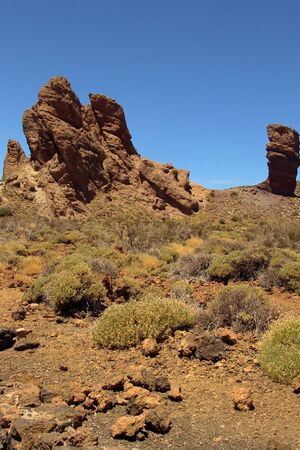 mountain vegetation Stock Photo - 394058