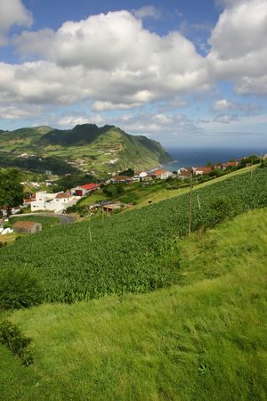 agriculture azores: azores village