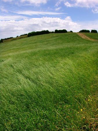 azores fields Stock Photo - 662660