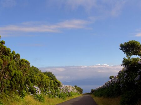 azores road on the mountain Stock Photo - 685806