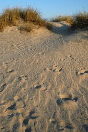 pilgramige: footprints on the dune Stock Photo