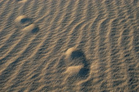 footprints on the sand photo