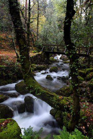 river waterfall in the portuguese national park photo