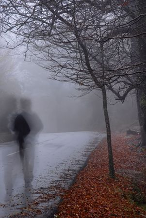 imminent: human shadows at the forest with fog