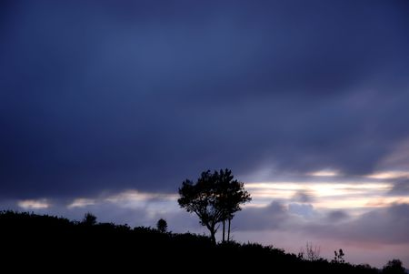 tree alone in the top of the mountain, long exposure shot Stock Photo - 886156