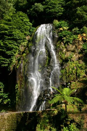 the silence of the world: big waterfall among green plants in azores, portugal
