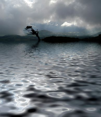 tree in a lake in a cloudy day, digital work Stock Photo - 1860919