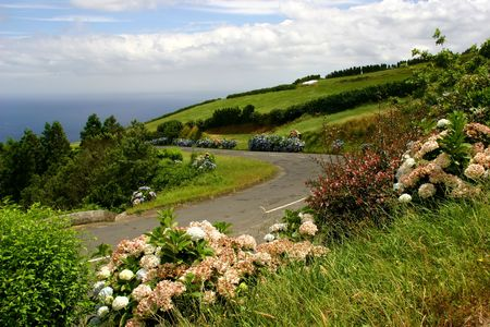 azores coastal landscape in the island of s miguel photo