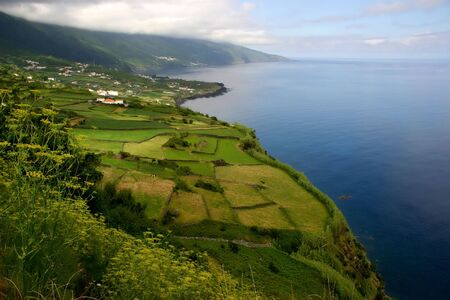 portugal agriculture: azores coastal view at sao miguel island