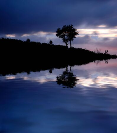 tree alone in the lake, long exposure shot Stock Photo - 2110354