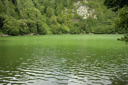 azores green lake at s miguel island                                photo