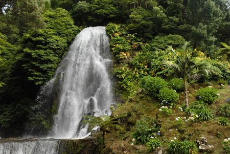 big waterfall among green plants in azores, portugal  photo