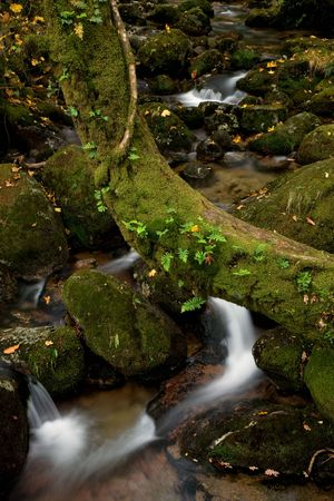 river waterfall in the portuguese national park Stock Photo - 6981629