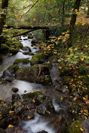 small river in the portuguese national park of Geres Stock Photo - 7392191