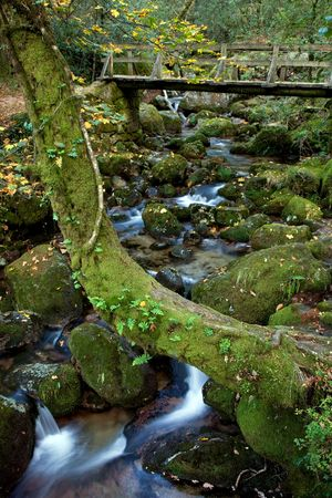 river waterfall in the portuguese national park Stock Photo - 7416973