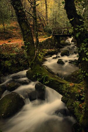 river waterfall in the portuguese national park of Geres, in the north of the country Stock Photo - 7749261