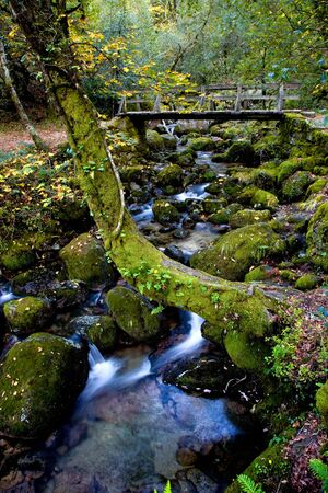 murmur: river waterfall in the portuguese national park of Geres, in the north of the country
