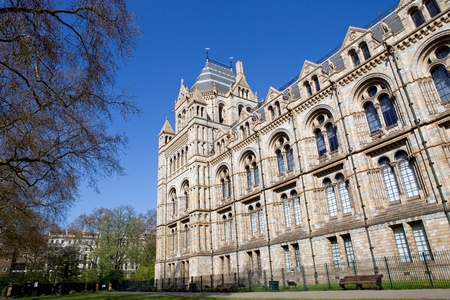 The Museum of Natural History in the London, England 스톡 콘텐츠